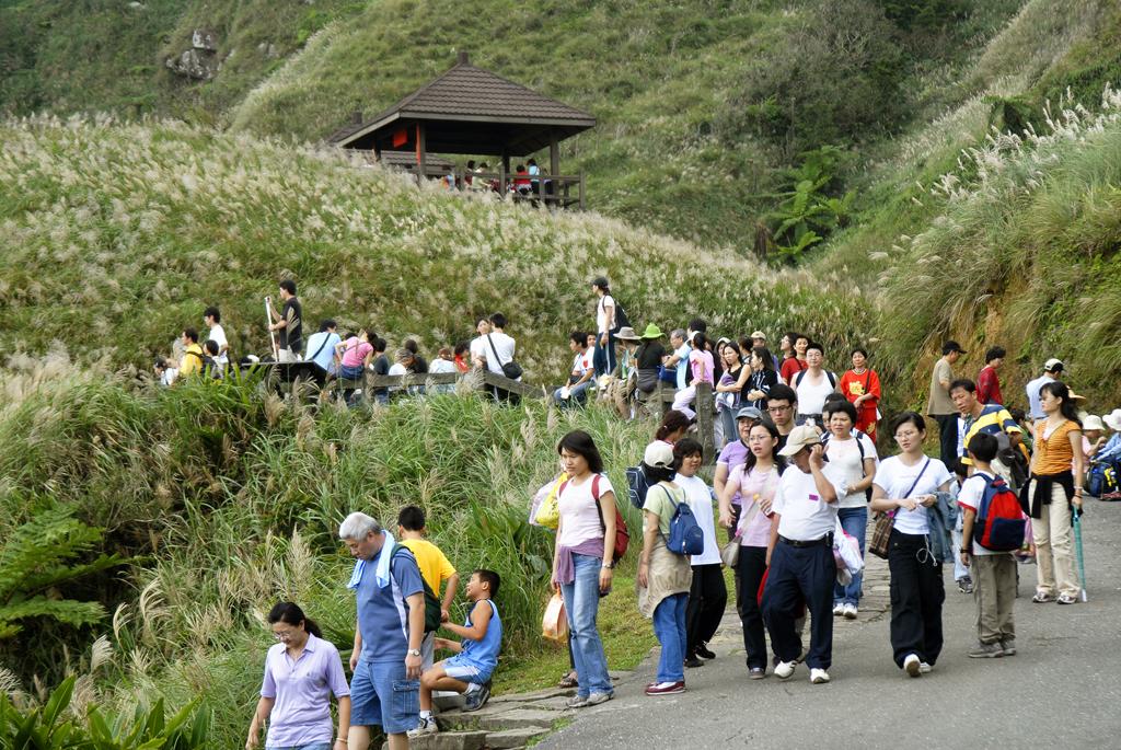 每年草嶺古道吸引超過60萬人前往健行